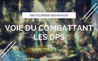 Voie du combattant : Les DPS