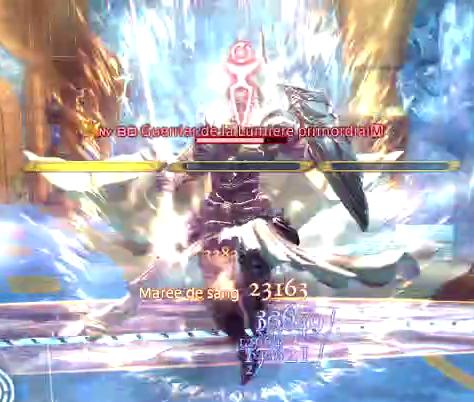 Elidibus - Transcendance niveau 1