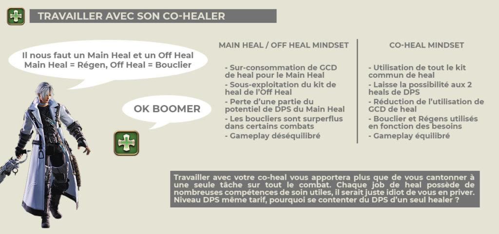 Infographie - Travailler avec son co-healer