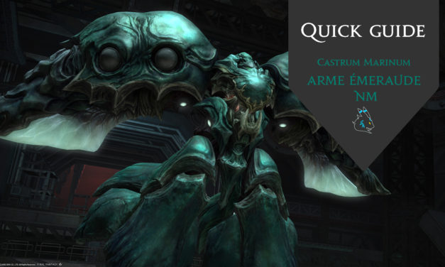 Castrum Marinum – Quick Guide NM