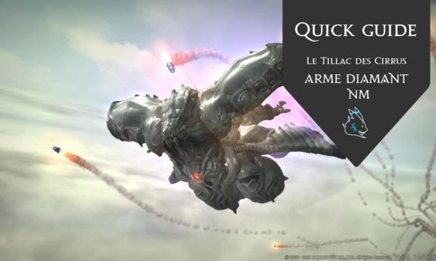 Le Tillac des Cirrus (Quick Guide NM)